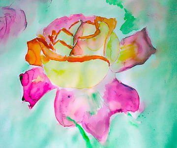 Rose von M.A. Ziehr