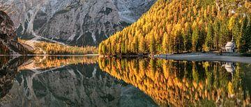 Automne dans le Tyrol du Sud sur Achim Thomae