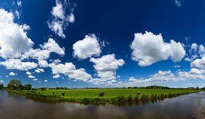 Hollands landschap panorama
