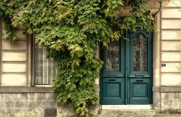 De deur in 't groen.. sur Ellen Driesse