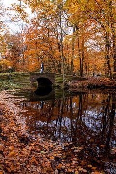 Herbstbrücke von peterheinspictures