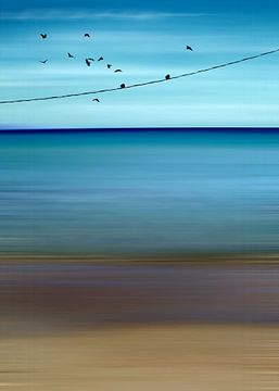 CRETAN SEA & BIRDS II v2 van
