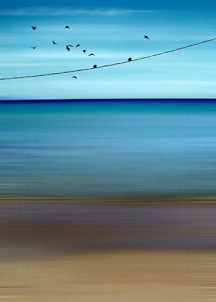 CRETAN SEA & BIRDS II v2