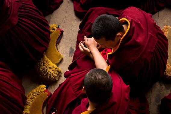 Twee jonge monniken tijdens de ochtend meditatie