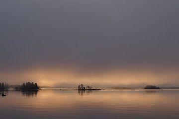 Misty morning von Marjon van Vuuren