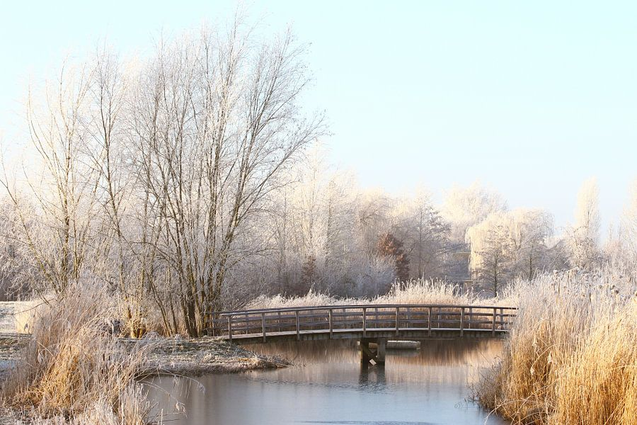 Winters Gorinchem van Richard Kortland