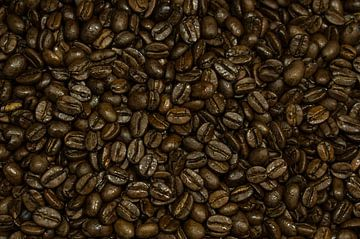 Koffiebonen von Rene Wassenbergh