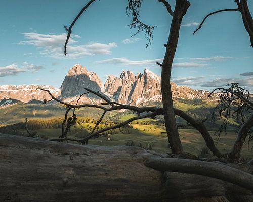 Framing the Mountains van
