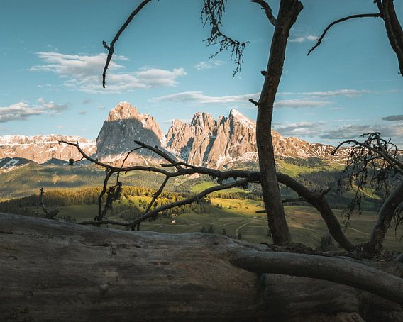 Framing the Mountains van michael regeer