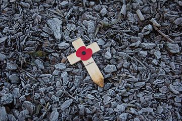 Herdenkingskruisje Wereldoorlog I tussen boomschors van Mike Maes