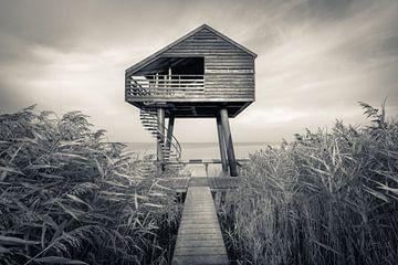Vogelbeobachtungskabine am Wattenmeer in der Morgendämmerung von Michel Seelen