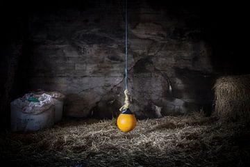 Yellow Ball - Gele bal van Reggy de With