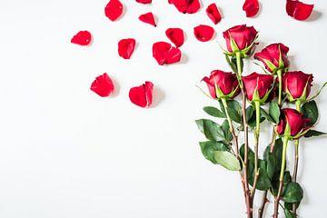 Le chaos des roses rouges sur Atelier Liesjes