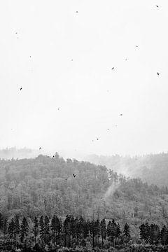 Wald im Nebel mit Vögeln von Angeline Dobber