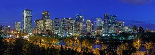 Skyline Calgary in de nacht van
