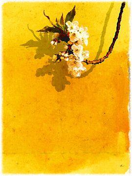 Blütentraube von Dirk H. Wendt