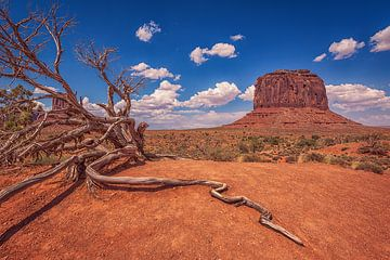 Monument Valley, Merrick Butte, Utah von Sander Sterk