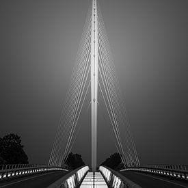 The Harp Bridge, designed by Santiago Calatrava. van Henk Meijer Photography