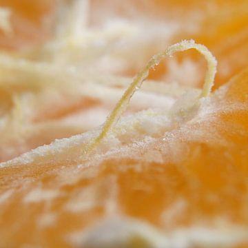 mandarijn van E.M Hak