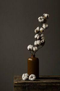 Foto print | Stilleven van een katoentak in aardewerk vaas | botanisch