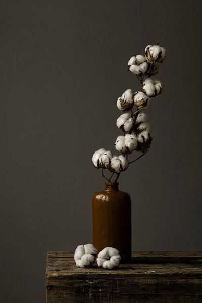 Foto print | Stilleven van een katoentak in aardewerk vaas | botanisch van Jenneke Boeijink