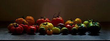 391 Tomates sur Hay Hermans