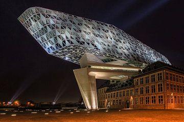 Antwerpen Havenhuis von Co Mens