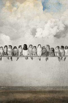 All the Pretty Birds von Marja van den Hurk