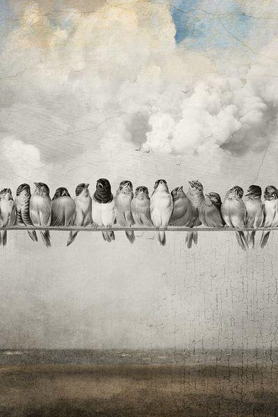 All the Pretty Birds van Marja van den Hurk
