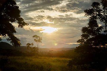 Veld met zonsopgang van MM Imageworks