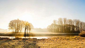 Een ochtend in Emsland van Günter Albers