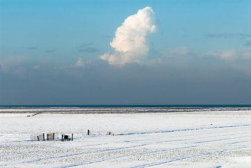 winterlandschap  van Geertjan Plooijer