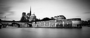 Notre Dame - Paris van