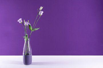 moderne stilleven paars van Anita Visschers