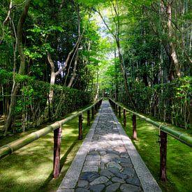 Bamboe tempel in Japan sur Michael Bollen