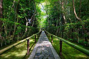 Bamboe tempel in Japan von