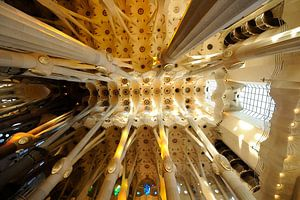 De Sagrada Familia in Barcelona (2)
