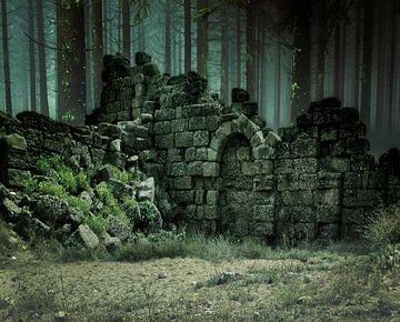 ruin-forest-green sur H.m. Soetens