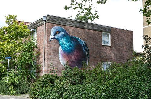 duif muurschildering straatbeeld zierikzee