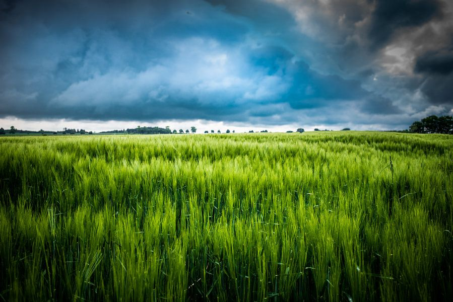 Gewitterwolken van Hannes Cmarits