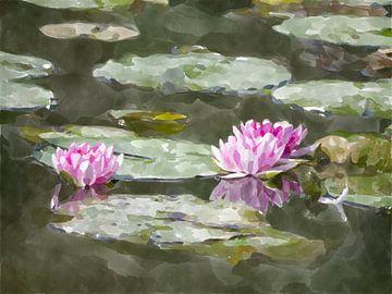 waterlelies bij zonsopgang van Paul Nieuwendijk