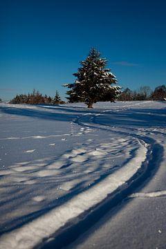 Een witte golfbaan sur Vincent van den Hurk