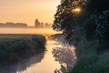 ein Strom, Nebel und die aufgehende Sonne von Tania Perneel