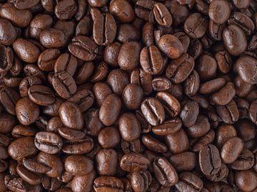 Koffiebonen van Maikel Brands