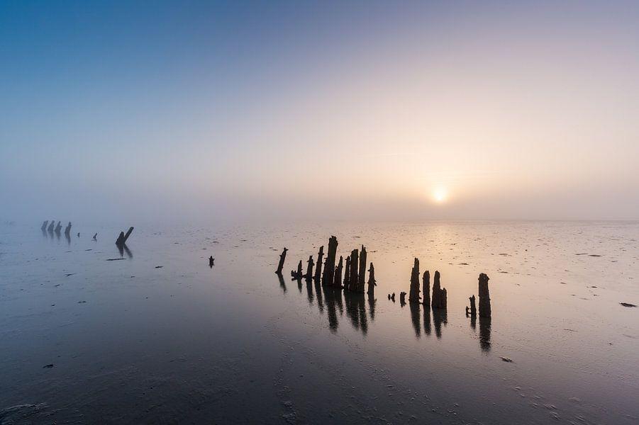 Het eindeloze Wad. van Ton Drijfhamer