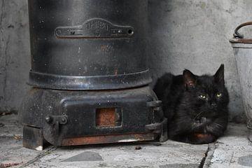 Zwarte kat bij zwarte kachel op black friday van