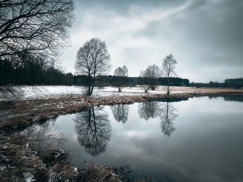Weiherweisen im Winter von Max Schiefele