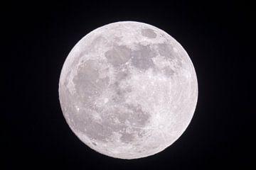 Full moon shining bright in dark night van wunderbare Erde