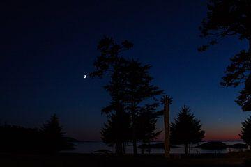 Nacht op Vancouver Island van Stefan Verheij