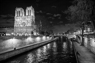 Notre Dame in Parijs van Loek van de Loo